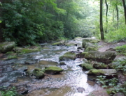 Fall_Creek_2